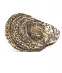 Oyster Shell Buckle